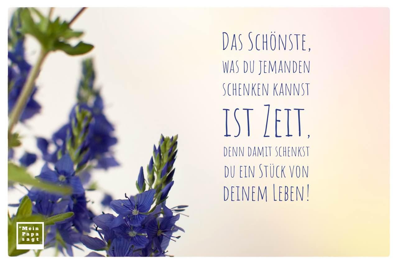 Blüten mit Sprüche Bilder: Das Schönste, was du jemanden schenken kannst ist Zeit, denn damit schenkst du ein Stück von deinem Leben!