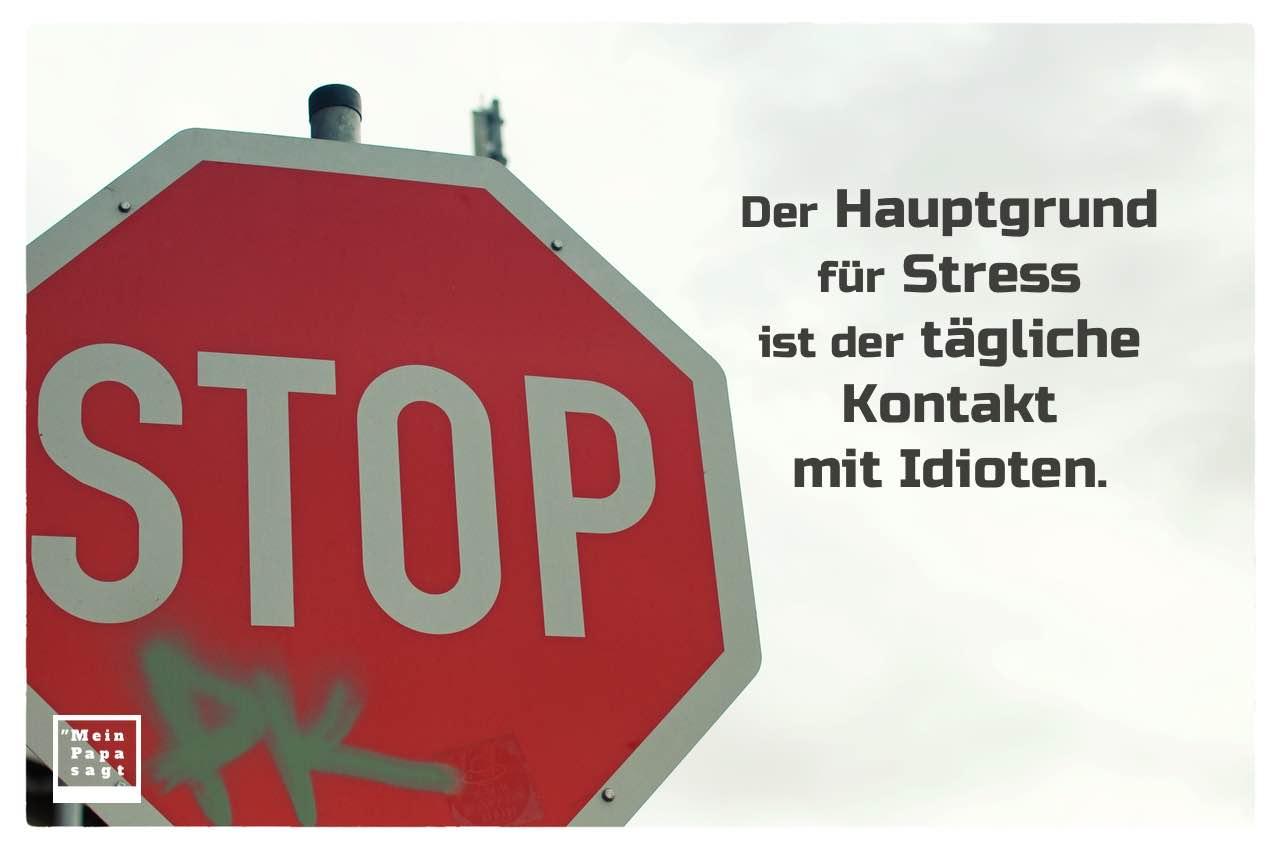 Stop-Schild mit Sprüche Bilder: Der Hauptgrund für Stress ist der tägliche Kontakt mit Idioten.