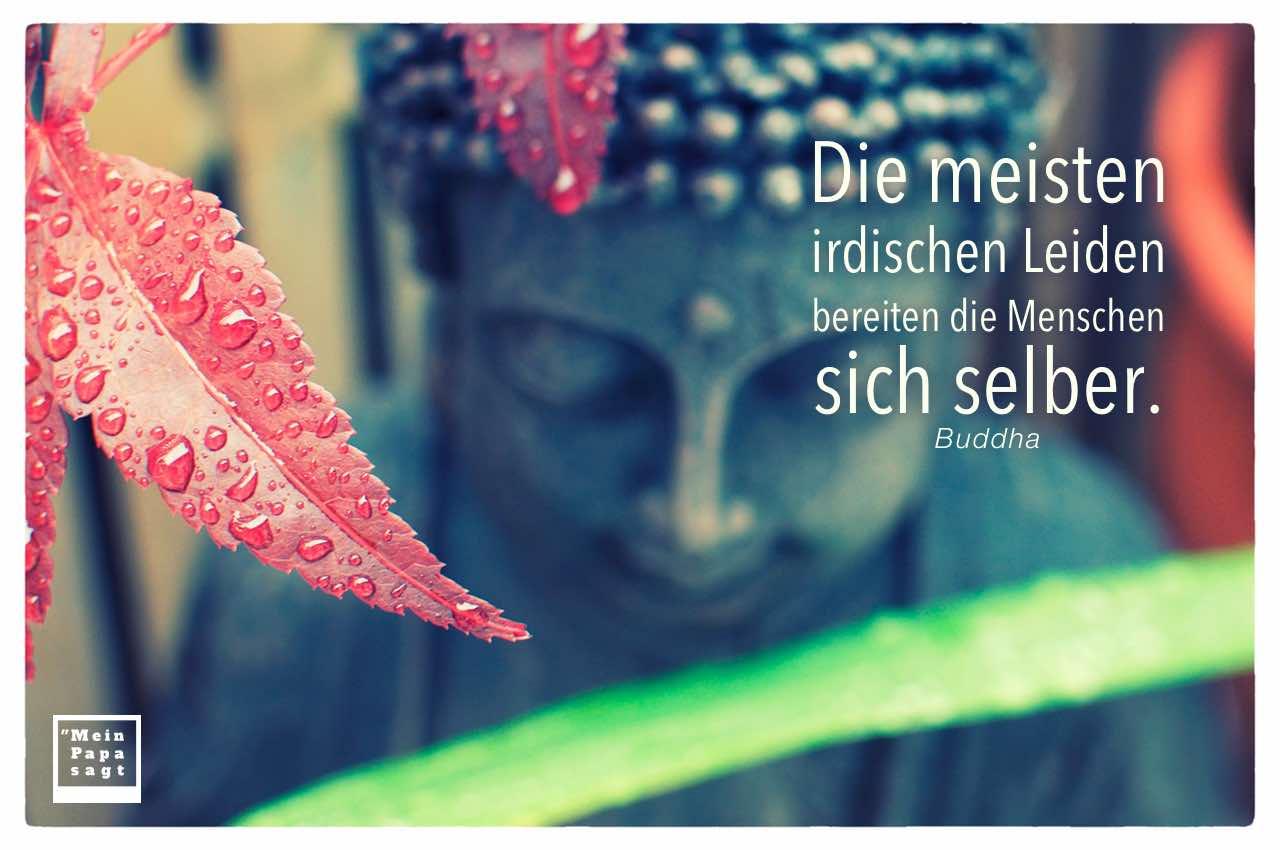 Buddha Statue mit Buddha Zitate Bilder: Die meisten irdischen Leiden bereiten die Menschen sich selber. Buddha