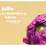 Dahlie Knospe mit Ferstl Zitate Bilder: Stille zieht Gedanken an, Lärm verjagt sie. Ernst Ferstl