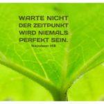 Grünes Blatt mit Hill Zitate Bilder: Warte nicht. Der Zeitpunkt wird niemals perfekt sein. Napoleon Hill