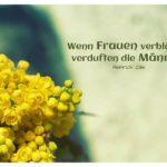 Blumen mit Zille Zitate Bilder: Wenn Frauen verblühen, verduften die Männer. Heinrich Zille