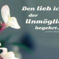 Den lieb ich, der Unmögliches begehrt - Johann Wolfgang von Goethe
