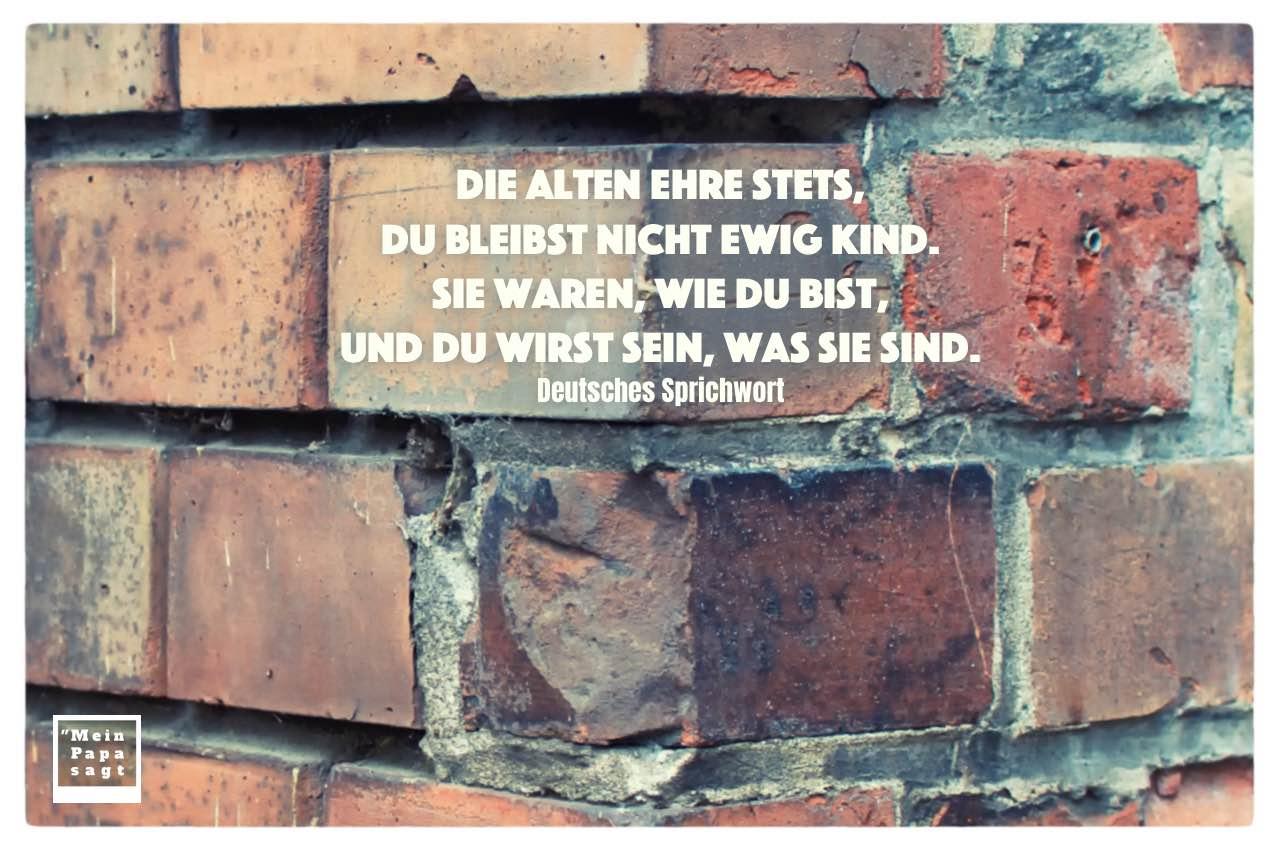 Alte Backsteinmauer mit deutsche Sprichwörter: Die Alten ehre stets, du bleibst nicht ewig Kind. Sie waren, wie du bist, und du wirst sein, was sie sind. Deutsches Sprichwort