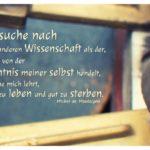 Steckfeld Lampenfassungen mit de Montaigne Zitate Bilder: Ich suche nach keiner anderen Wissenschaft als der, welche von der Kenntnis meiner selbst handelt, welche mich lehrt, gut zu leben und gut zu sterben. Michel de Montaigne