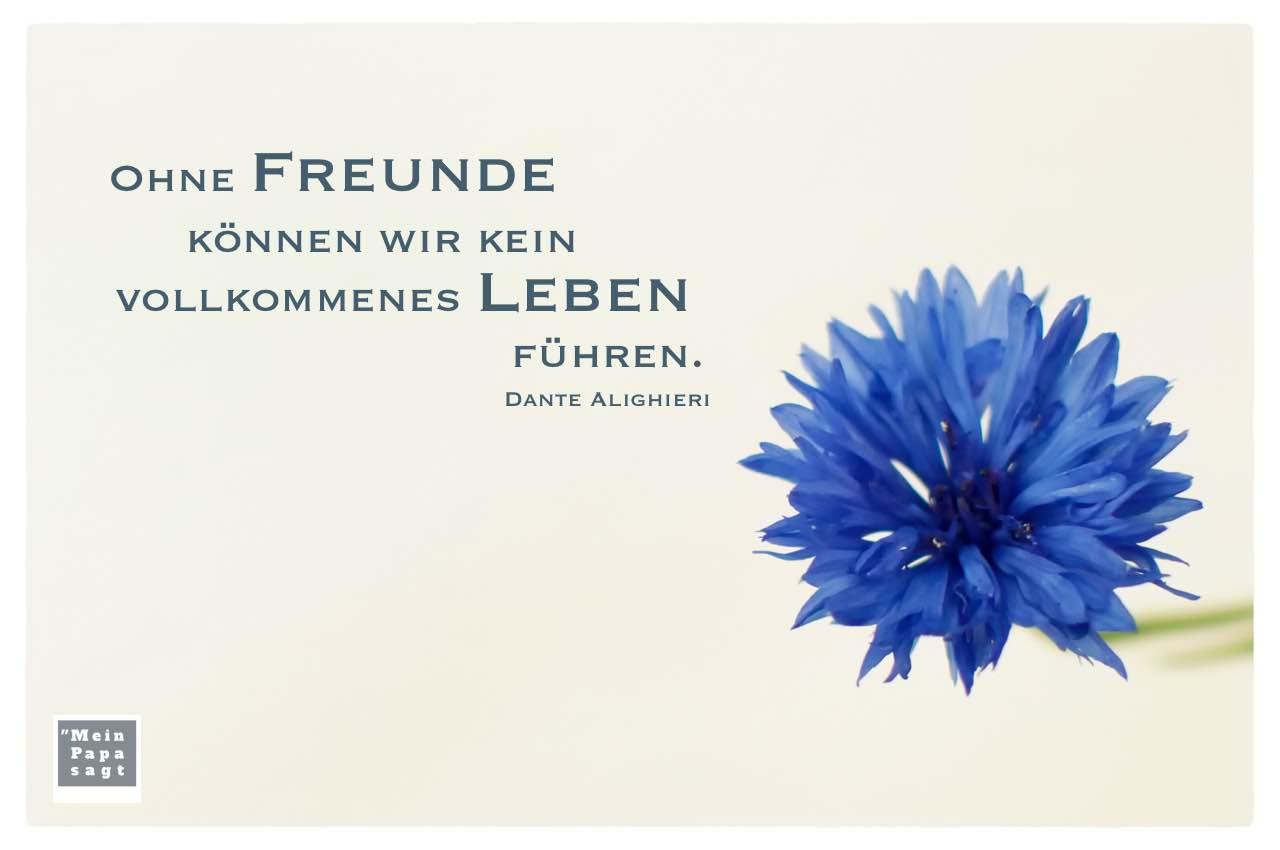 Kornblume mit Dante Alighieri Zitate Bilder: Ohne Freunde können wir kein vollkommenes Leben führen. Dante Alighieri
