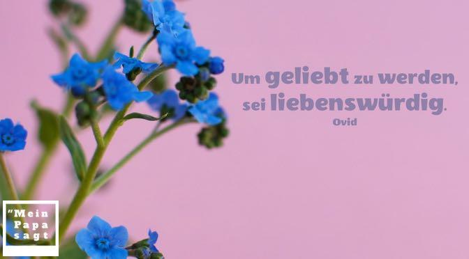 Um geliebt zu werden, sei liebenswürdig – Ovid