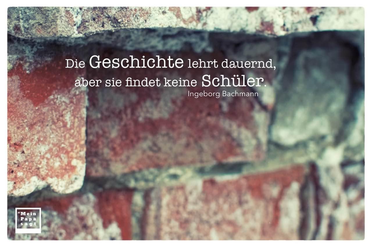 Alte Steinmauer mit Bachmann Zitate Bilder: Die Geschichte lehrt dauernd, aber sie findet keine Schüler. Ingeborg Bachmann