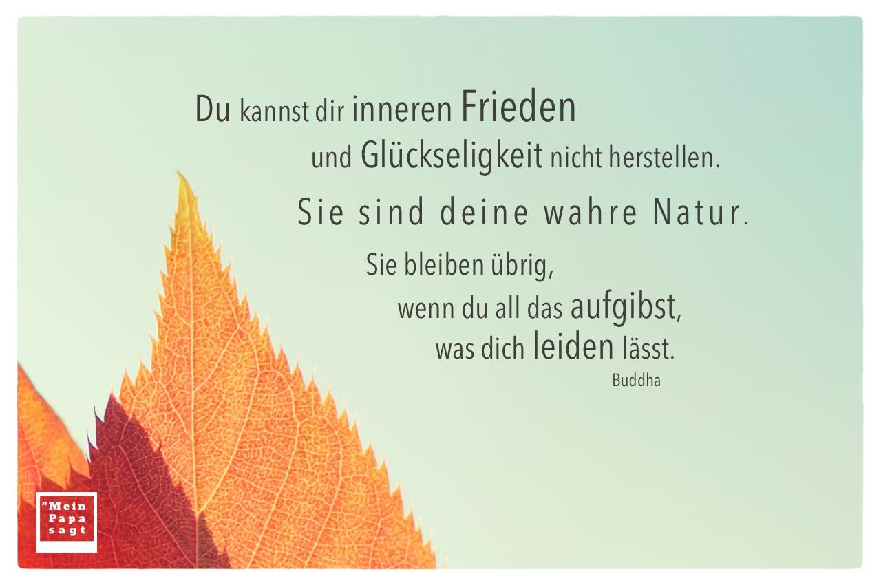 Laub vor Himmel mit Buddha Zitate Bilder: Du kannst dir inneren Frieden und Glückseligkeit nicht herstellen. Sie sind deine wahre Natur. Sie bleiben übrig, wenn du all das aufgibst, was dich leiden lässt. Buddha