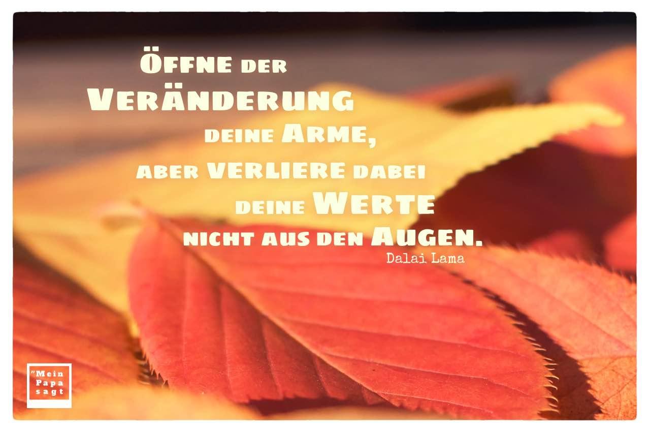 Herbstlaub mit Dalai Lama Zitate Bilder: Öffne der Veränderung deine Arme, aber verliere dabei deine Werte nicht aus den Augen. Dalai Lama