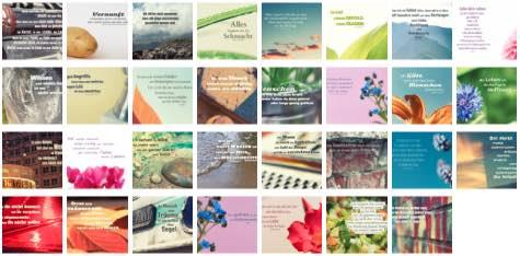 Übersichtsbild. Bilder Galerie mit Lebensweisheiten, Weisheiten, Zitate Bilder, Sprichwörter und Sprüche Bilder des Tages August 2019