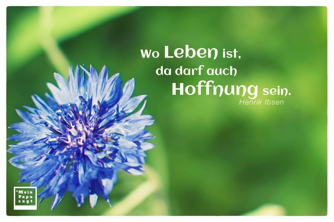 Kornblume mit Mein Papa sagt Ibsen Zitate Bilder: Wo Leben ist, da darf auch Hoffnung sein. Henrik Ibsen