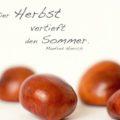 Der Herbst vertieft den Sommer - Manfred Hinrich