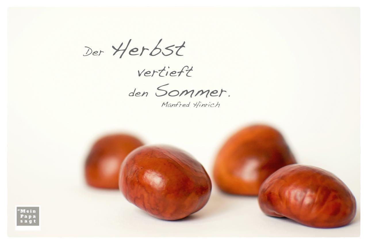 Kastanien mit Hinrich Herbst Zitate Bilder: Der Herbst vertieft den Sommer. Manfred Hinrich