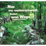 Waldweg in Italien mit Sprichwort Norwegisch: Nur wer umherschweift, findet neue Wege. Norwegisches Sprichwort