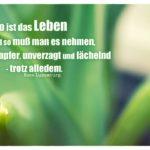 Blätter Pflanze mit Luxemburg Zitate Bilder: So ist das Leben und so muß man es nehmen, tapfer, unverzagt und lächelnd - trotz alledem. Rosa Luxemburg