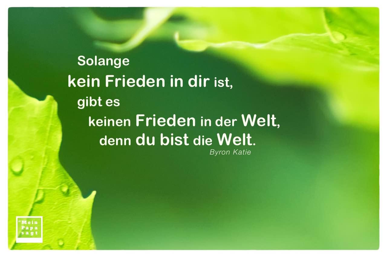 Blätter Regentropfen mit Byron Katie Zitate Bilder: Solange kein Frieden in dir ist, gibt es keinen Frieden in der Welt, denn du bist die Welt. Byron Katie