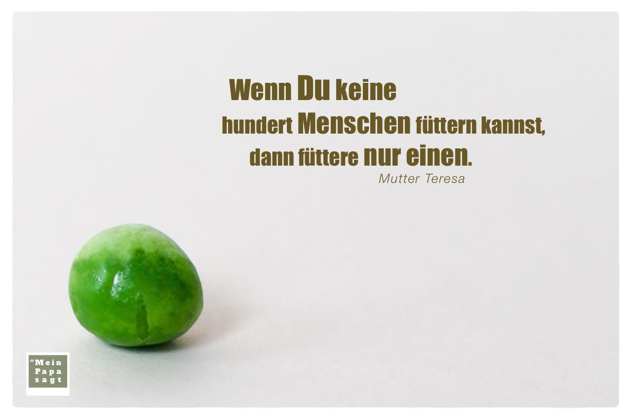 Grüne Erbse mit Mutter Teresa Zitate Bilder: Wenn Du keine hundert Menschen füttern kannst, dann füttere nur einen. Mutter Teresa