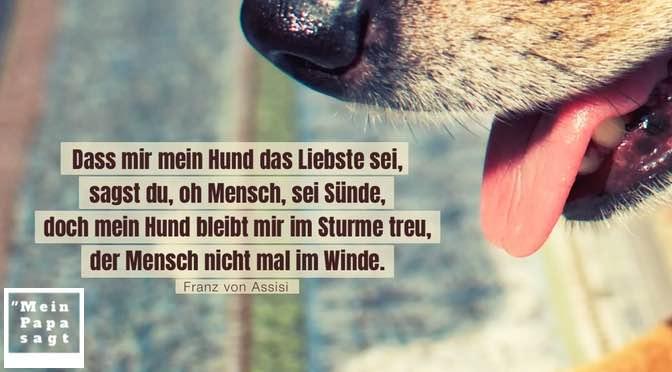 Dass mir mein Hund das Liebste sei, sagst du, oh Mensch, sei Sünde, doch mein Hund bleibt mir im Sturme treu, der Mensch nicht mal im Winde