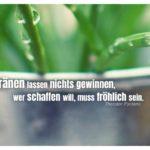 Blumentopf Pflanze Regentropfen mit Fontane Zitate Bilder: Die Tränen lassen nichts gewinnen, wer schaffen will, muss fröhlich sein. Theodor Fontane