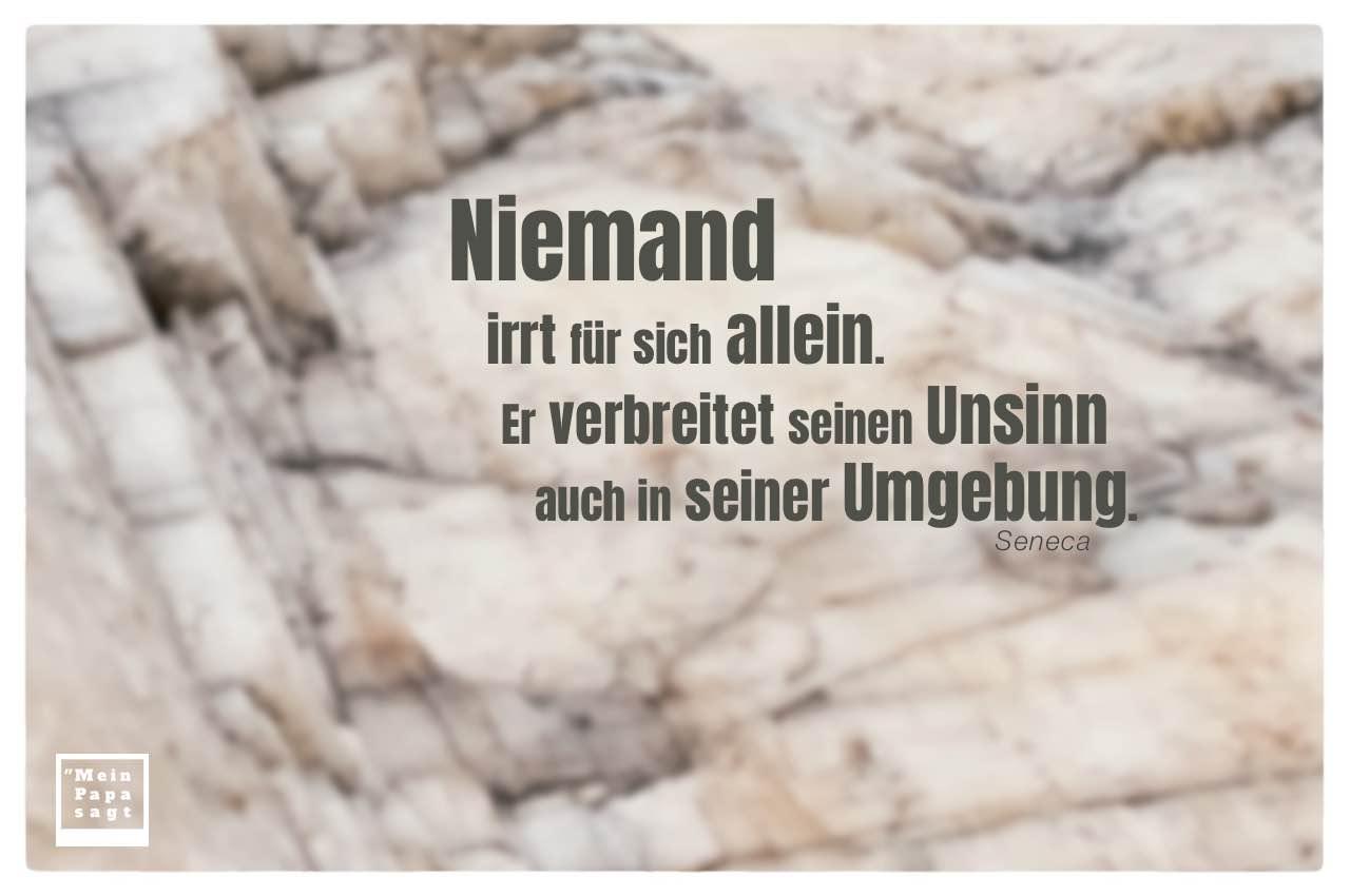 Felsen Stein mit Seneca Zitate Bilder: Niemand irrt für sich allein. Er verbreitet seinen Unsinn auch in seiner Umgebung. Seneca