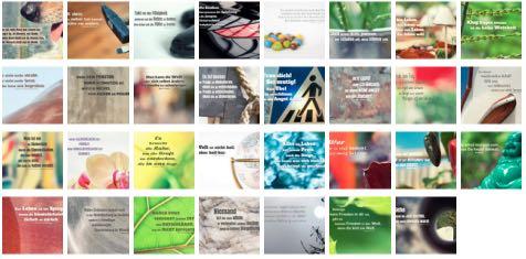 Übersichtsbild. Bilder Galerie mit Lebensweisheiten, Weisheiten, Zitate Bilder, Sprichwörter, Affirmationen und Sprüche Bilder des Tages Oktober 2019