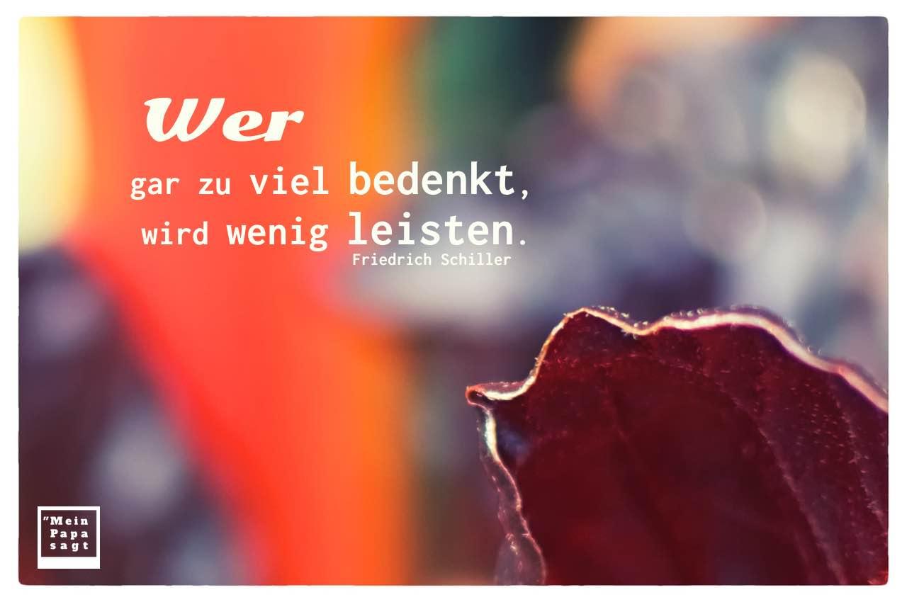 Kohlgemüse mit Schiller Zitate Bilder: Wer gar zu viel bedenkt, wird wenig leisten. Friedrich Schiller
