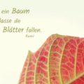 Sei wie ein Baum und lasse die toten Blätter fallen - Rumi