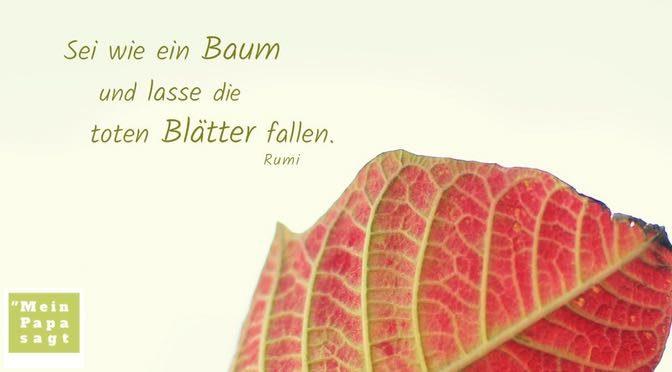 Sei wie ein Baum und lasse die toten Blätter fallen – Rumi