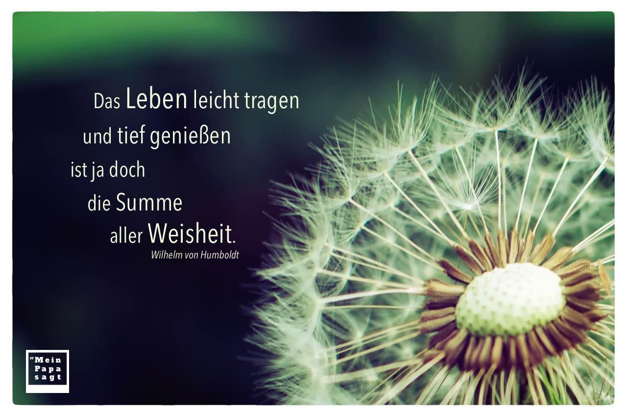 Pusteblume / Gewöhnlicher Löwenzahn mit Humboldt Zitate Bilder: Das Leben leicht tragen und tief genießen ist ja doch die Summe aller Weisheit. Wilhelm von Humboldt