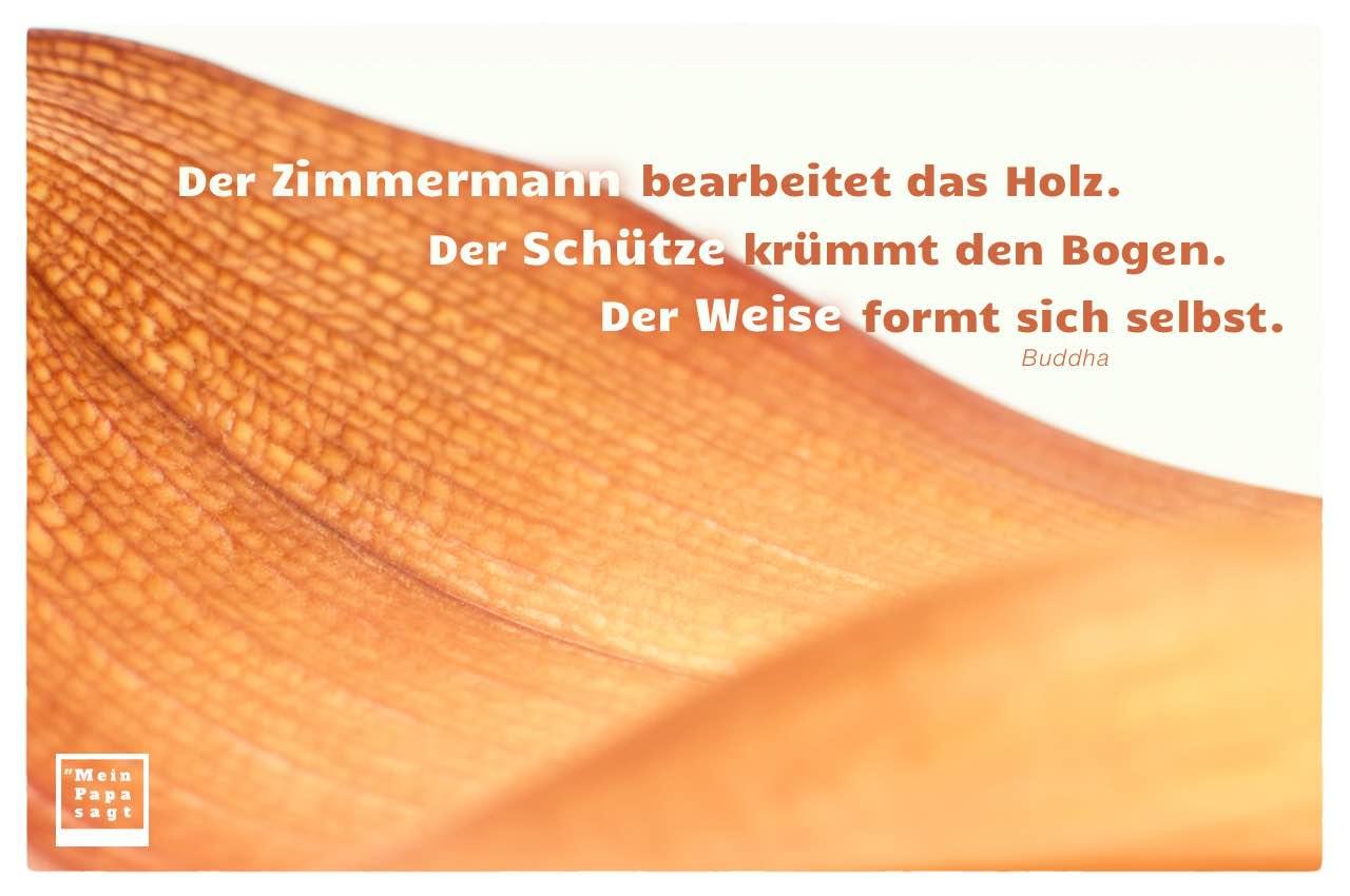 Altes Palmenblatt mit Buddha Zitate Bilder: Der Zimmermann bearbeitet das Holz. Der Schütze krümmt den Bogen. Der Weise formt sich selbst. Buddha