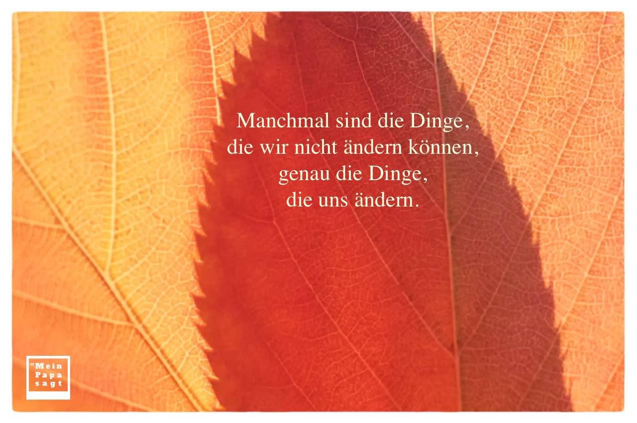 Herbstlaub mit Sprüche Bildern: Manchmal sind die Dinge, die wir nicht ändern können, genau die Dinge, die uns ändern.