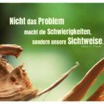 Geborstenes Holz mit Frankl Zitate Bilder: Nicht das Problem macht die Schwierigkeiten, sondern unsere Sichtweise. Viktor E. Frankl