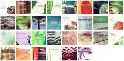 Übersichtsbild. Bilder Galerie mit Lebensweisheiten, Weisheiten, Zitate Bilder, Sprichwörter, Affirmationen und Sprüche Bilder des Tages November 2019