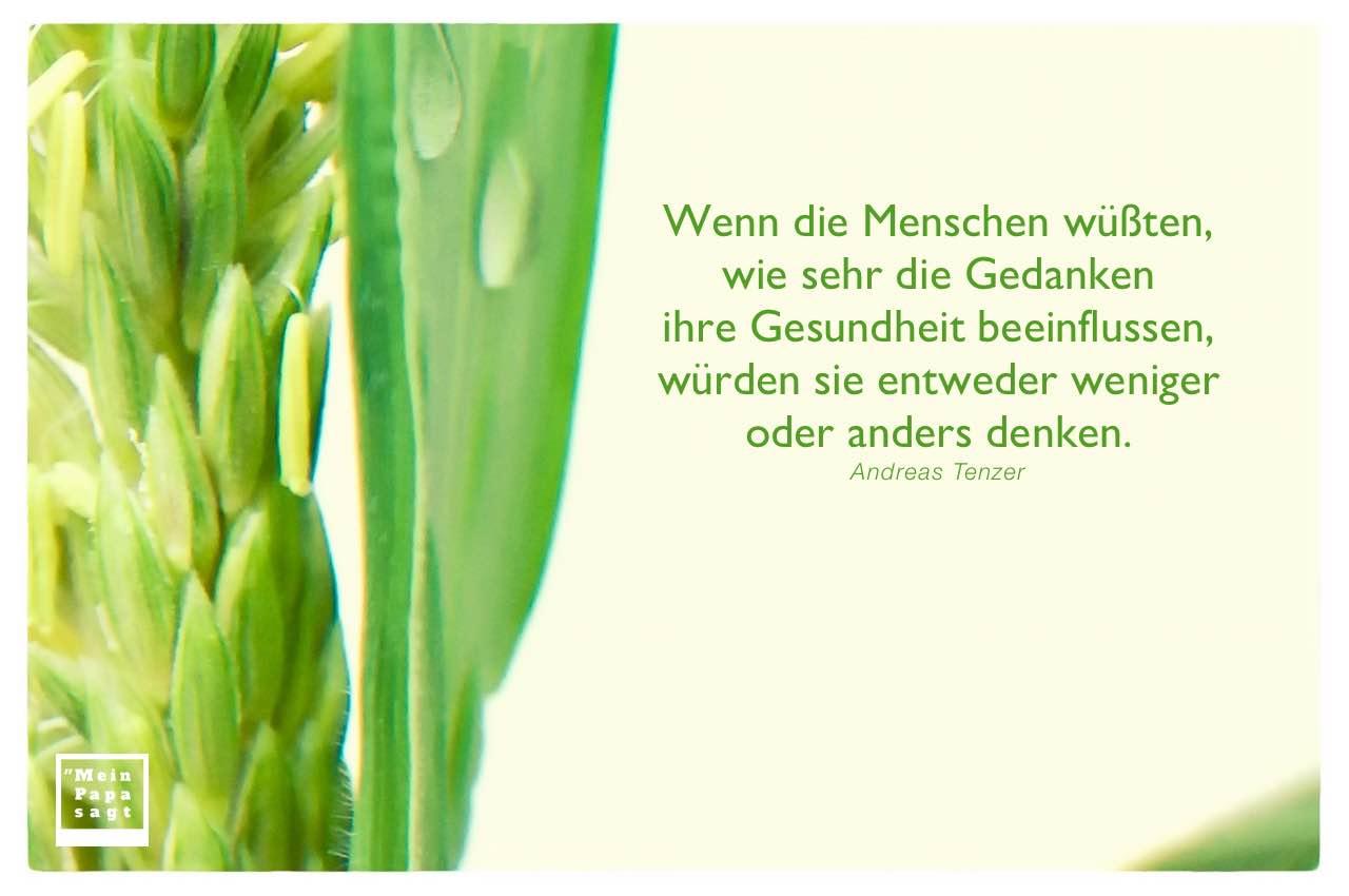 Pflanze mit Tenzer Zitate Bilder: Wenn die Menschen wüßten, wie sehr die Gedanken ihre Gesundheit beeinflussen, würden sie entweder weniger oder anders denken. Andreas Tenzer