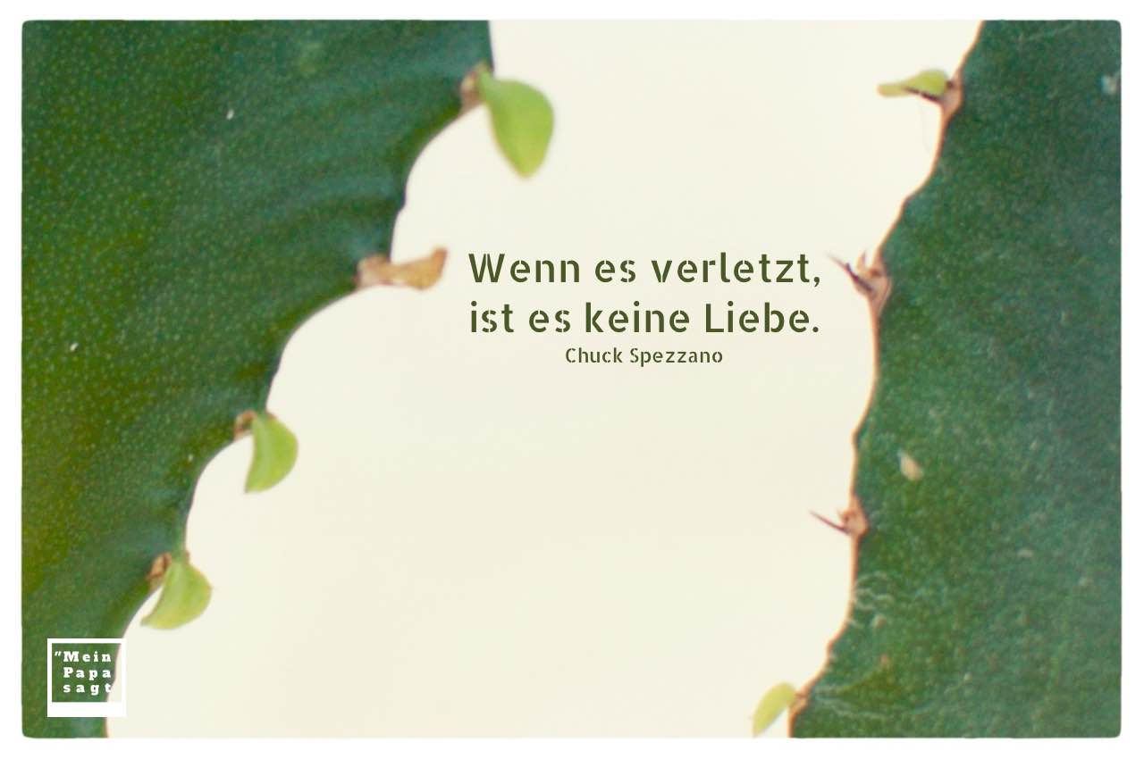 Kakteen mit Spezzano Zitate Bilder: Wenn es verletzt, ist es keine Liebe. Chuck Spezzano