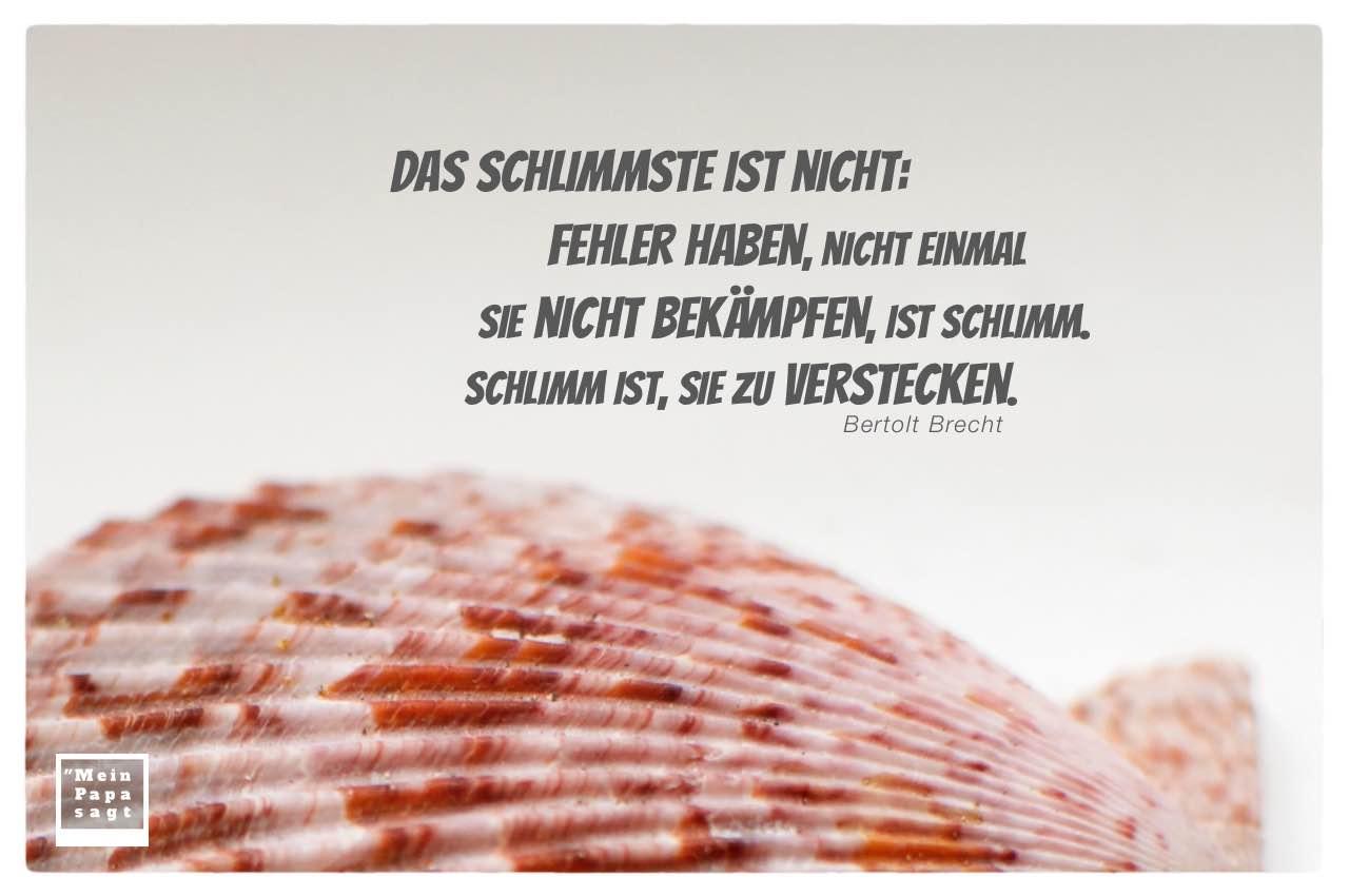 Muschel mit Brecht Zitate Bilder: Das Schlimmste ist nicht: Fehler haben, nicht einmal sie nicht bekämpfen, ist schlimm. Schlimm ist, sie zu verstecken. Bertolt Brecht