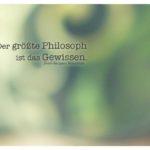 Blumentopf unscharf mit Rousseau Zitate Bilder: Der größte Philosoph ist das Gewissen. Jean-Jacques Rousseau