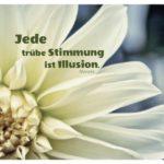 Blütenkelch Dahlie mit Novalis Zitate Bilder: Jede trübe Stimmung ist Illusion. Novalis