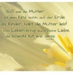 Blütenkelch mit Stempel und Euripides Zitate Bilder: Süß wie die Mutter ist dem Kind nichts auf der Erde. Ja, Kinder, habt die Mutter lieb! Das Leben bringt euch keine Liebe, die sowohl tut wie diese. Euripides