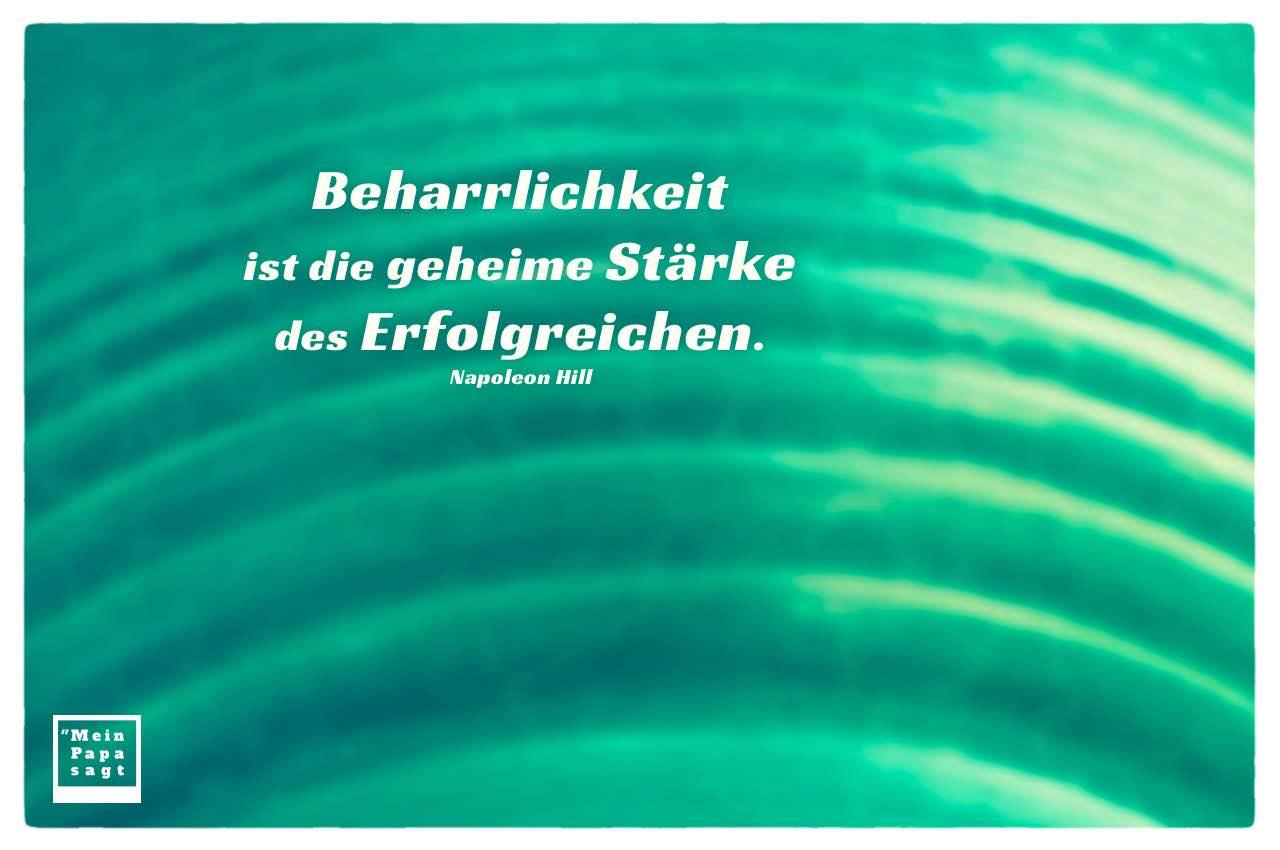 Blumenvase mit Hill Zitate Bilder: Beharrlichkeit ist die geheime Stärke des Erfolgreichen. Napoleon Hill