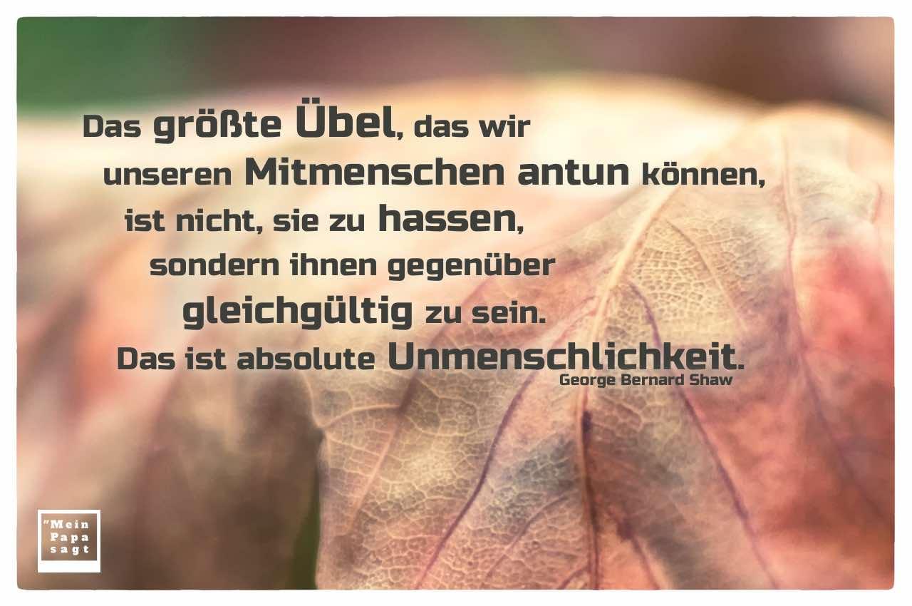 Herbstlaub mit Shaw Zitate Bilder: Das größte Übel, das wir unseren Mitmenschen antun können, ist nicht, sie zu hassen, sondern ihnen gegenüber gleichgültig zu sein. Das ist absolute Unmenschlichkeit. George Bernard Shaw