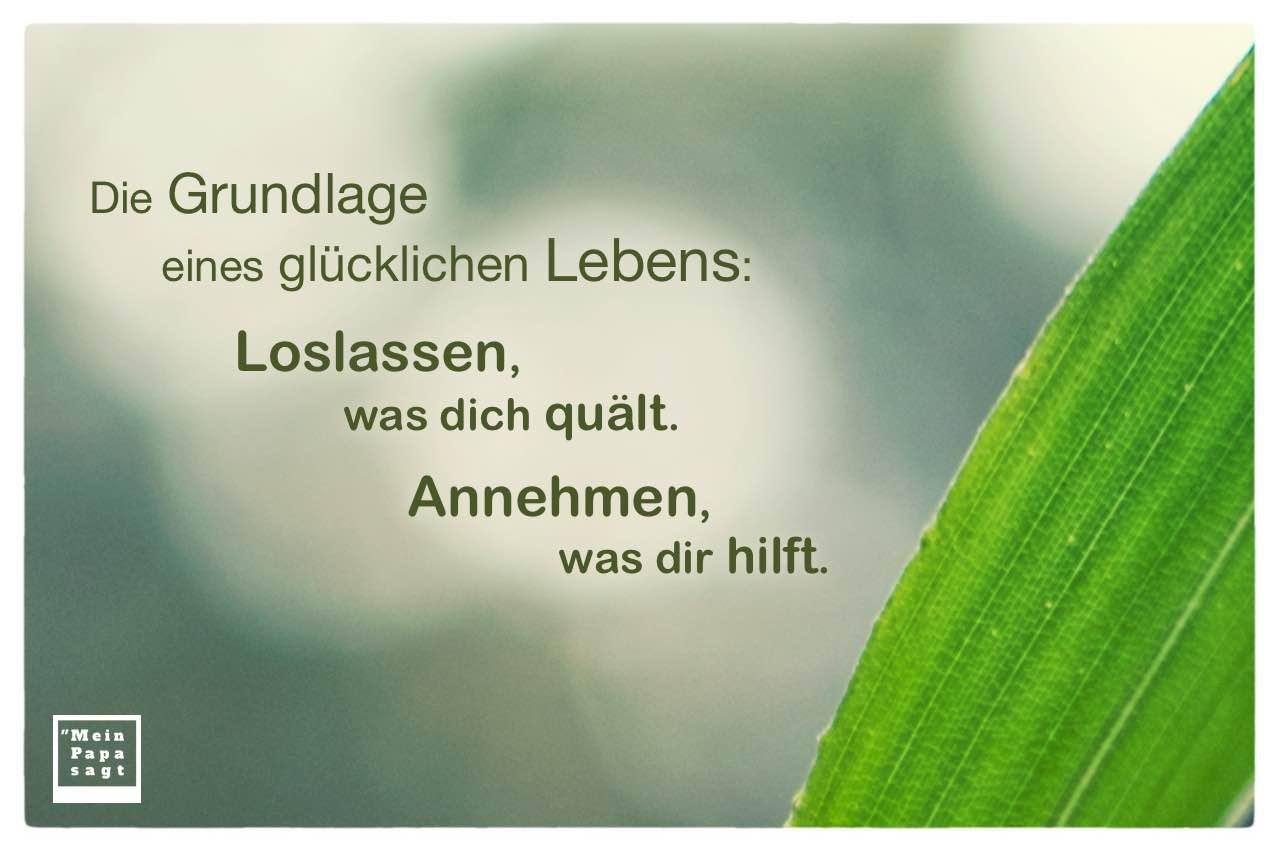 Palmenblatt mit Sprüche Bilder: Die Grundlage eines glücklichen Lebens: Loslassen, was dich quält. Annehmen, was dir hilft.