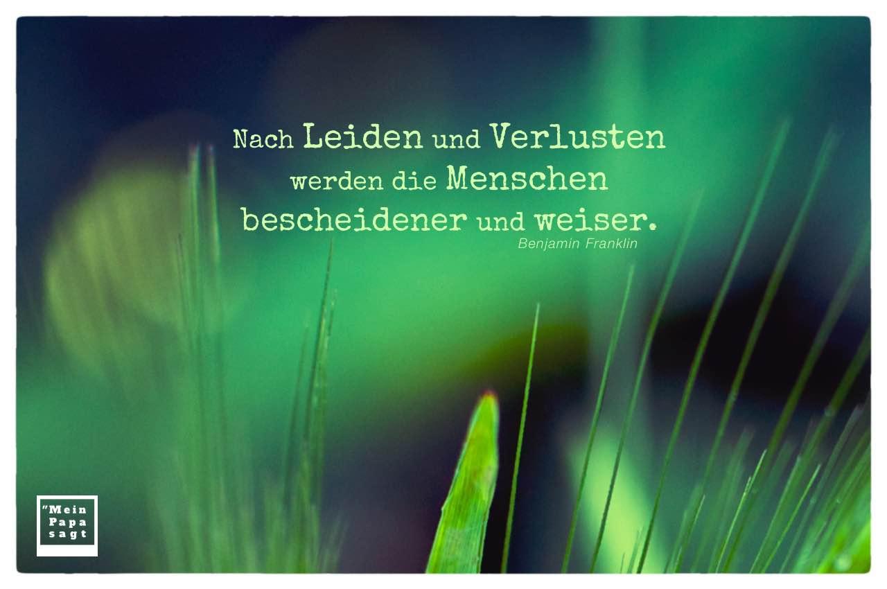 Pflanzen und Gräser mit Franklin Zitate Bilder: Nach Leiden und Verlusten werden die Menschen bescheidener und weiser. Benjamin Franklin