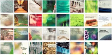 Übersichtsbild. Bilder Galerie mit Lebensweisheiten, Weisheiten, Zitate Bilder, Sprichwörter, Affirmationen und Sprüche Bilder des Tages Januar 2020