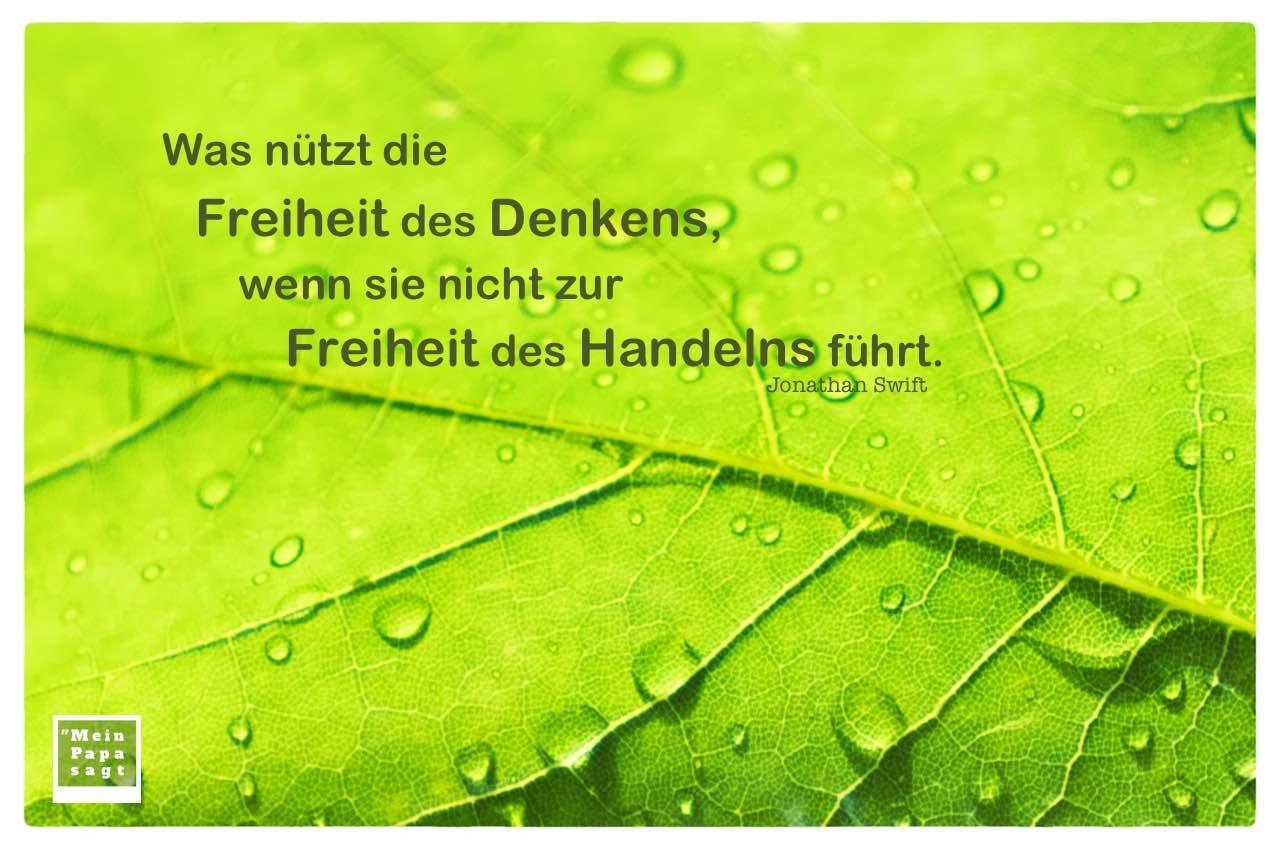 Grünes Blatt mit Regentropfen und Swift Zitate Bilder: Was nützt die Freiheit des Denkens, wenn sie nicht zur Freiheit des Handelns führt. Jonathan Swift