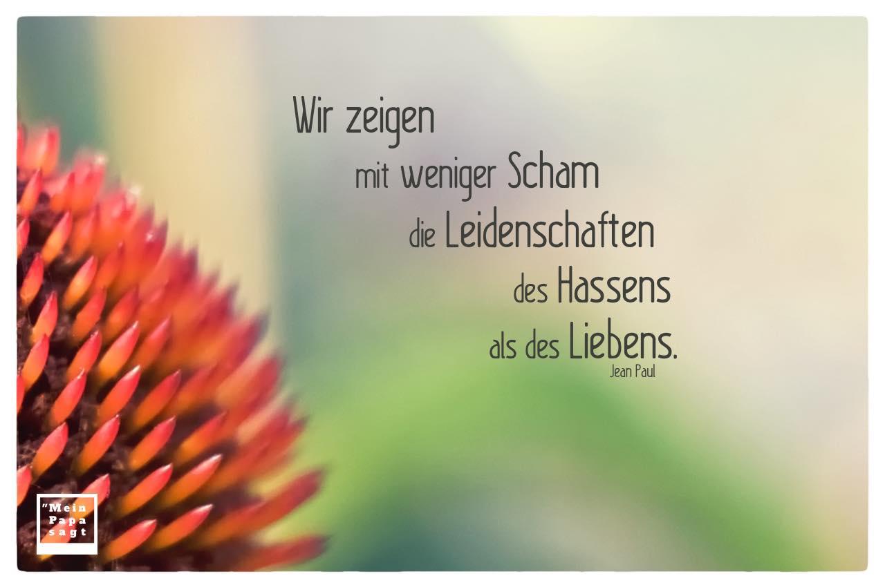 stachelige Blüte mit Paul Zitate Bilder: Wir zeigen mit weniger Scham die Leidenschaften des Hassens als des Liebens. Jean Paul