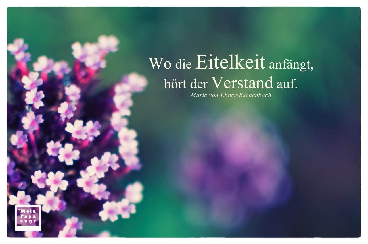 Kleine Blüten mit Ebner-Eschenbach Zitate Bilder: Wo die Eitelkeit anfängt, hört der Verstand auf. Marie von Ebner-Eschenbach