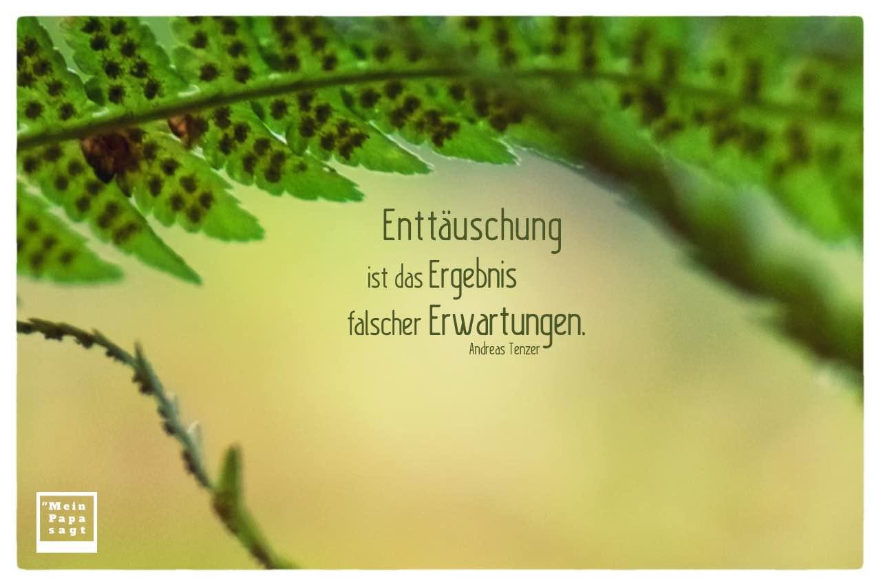 Farn mit Tenzer Zitate Bilder: Enttäuschung ist das Ergebnis falscher Erwartungen. Andreas Tenzer