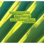 Palmenblätter mit Emerson Zitate Bilder: Fange zu tun an, dann hast du auch die Kraft dazu. Ralph Waldo Emerson